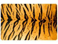 Multi Color 23 in. x 36 in. Neoprene Tiger Door Mat is