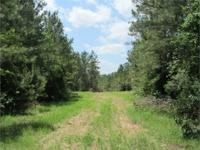 Well Managed Timber and Recreation Tract! This wooded