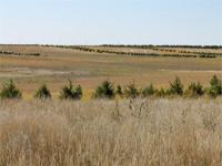 Eitel Section - Bushnell, Kimball County, Nebraska: