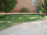 Permian Basin's Turf Paint Specialists. Paint available