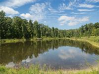 427 acre Recreational/ Timberland tract located in