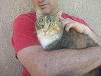 Cali's story You can fill out an adoption application