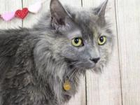 Calypso's story Calypso is current available for