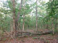 This very secluded 38 acre Camden County property has