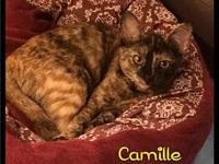 Camille - 169 / 2018's story Please contact Maumelle