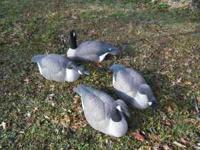 Goose Decoy Shells 48, Red Head flocked head goose