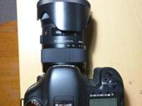 I have a Canon 7D and a Sigma 18-35 f/1.8 Art lens for
