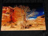 Canyon De Chelly Landscape Photograph ready to be hung