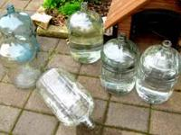 CARBOYS Six Carboys for sale. Good condition. We have