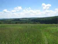 209 acres of farmland with fenced pastures, pond and