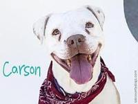 Carson's story *** COURTESY LISTING *** PLEASE CALL OR