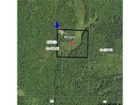 36 Acres Leake County MS. Hunting, Wooded, Deer, Ducks,
