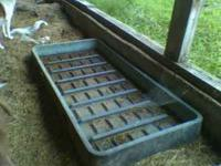 Heavy duty foot bath that we used for our dairy cattle.
