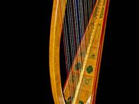 Reduced New Celtic style lever harp by Douglas Harp