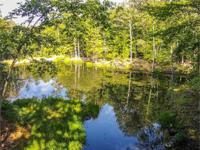 8.2 Acres With 800 Feet of Trout Stream Frontage Just