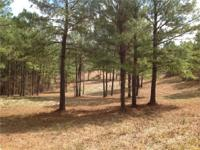 75 acres +/- of land for sale in east Perry County,