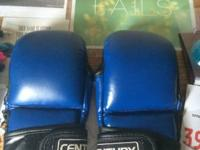 I have a pair of Blue Century MMA gloves. They are