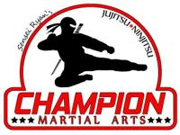 We are a Professional Martial Arts School that focuses