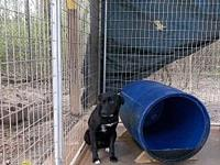 Chance's story Chance is a very scared little boy who