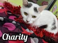 My story Meet Charity! At approximately one year old,