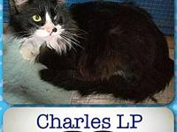 Charles LP's story He must have had an eye infection