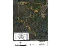 The Turner Tract is a great hunting property for deer,
