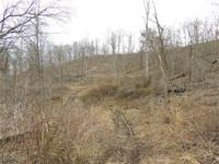 This 35.5 acres in Lawrence County, Ohio is an