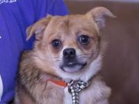 Chester's story *REQUIRES A LONGER ADOPTION PROCESS AND
