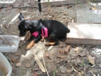 *Sweet Tiny Girl~6 Months Old *Full of Life, Love and