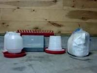 For sale are 2 one-gallon plastic watering cans, 1