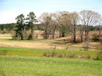 Jones Cattle farm is conveniently located near the