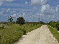 Buildable lot in Washington County Florida! Ready to