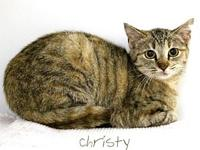 Christy's story Christy and Chuckie have become best