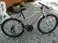 CHROME SCHWINN THRASHER 6 SPEED MOUNTAIN BIKE, 24""