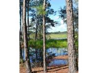 This home is 220 +/- acres ideal for hunting, farming,