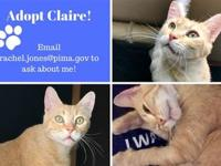 CLAIRE's story Claire is in a foster home! Email