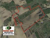 54 Acres of Land For Sale in Bladen County NC! This is