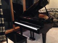 Classic Baby Grand Piano - Bergmann Young Chang Ebony