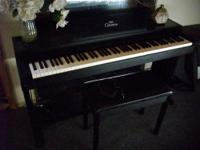 This Yamaha Clavinova Digital piano is model # CLP-300