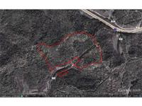 Great 100 acre Tract of land with numerous out