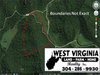 This is a great tract of land with good hunting,