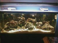 20 gallon tank comes complete with Whisper filter,