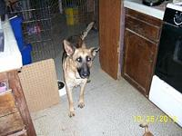 Clee's story You can fill out an adoption application