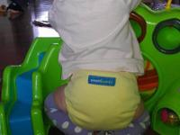 Smartipants cloth diapers are  best in the market which