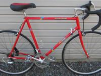 "Local Motion; made in Japan; 12-speed; 23"" frame,"