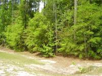 CLYO MLS # - 121470 2.25 Acres on bluff, ignores