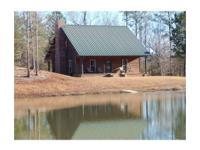 Remote Custom Built Cabin overlooking 4 acre Spring Fed