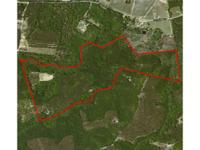 Donnell timber system is an enjoyable 167+/- acre