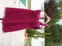 NWT gorgeous magenta knee length dress, SIZE 10P, with