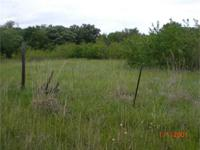 What a beautiful small acreage located just about 4